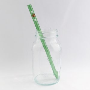 Ivy Long Smoothie Glass Straw
