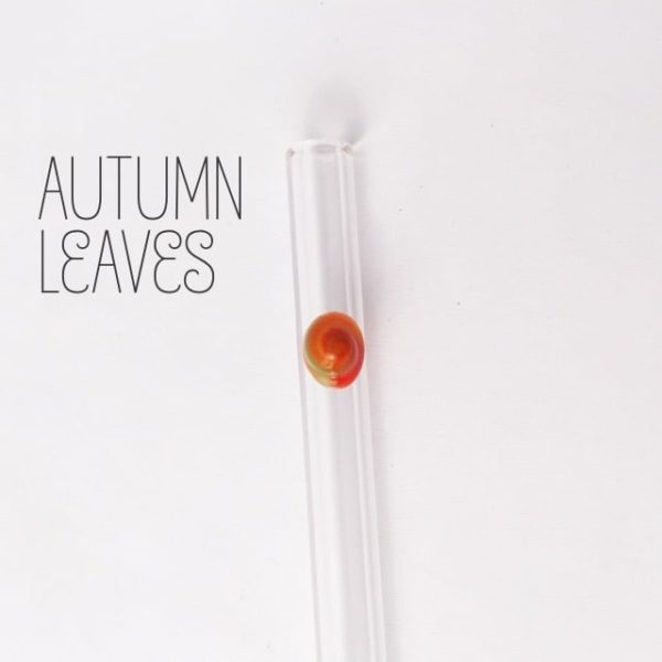 Autumn Leaves Skinny Glass Straw