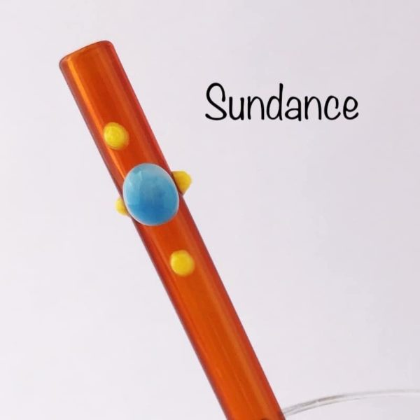Sundance Glass Drinking Straw